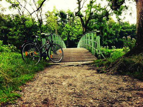 Senior Category Winner: Dito Vonderlueh, Germany Bike Bridge